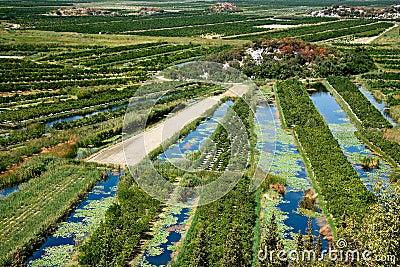 Delta of the river Neretva