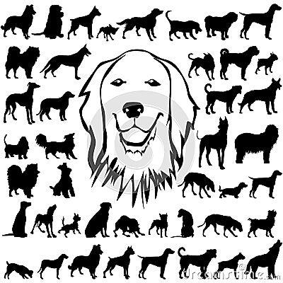 Den detaljerade hunden silhouettes vectoral