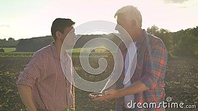 Den gamla fadern och sonen som talar, hållande jord för farsa gömma i handflatan på, och samtal som står på jordning i fält, soln arkivfilmer