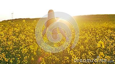 Den härliga flickan går på fält av blommor på solnedgången stock video
