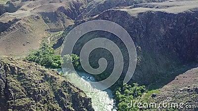 Den snabba floden kör till och med en stenig kanjon På bankerna av floden väx olika gröna träd och buskar stock video