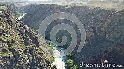 Den snabba floden kör till och med en stenig kanjon På bankerna av floden väx olika gröna träd och buskar arkivfilmer