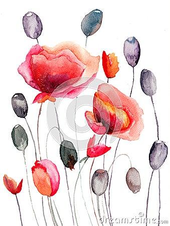 Den Stylized vallmon blommar illustrationen