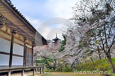 Den trädgårds- pagodaen sankeien