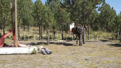 Den traditionella cowboyen vilar på jordning nära hästen stock video