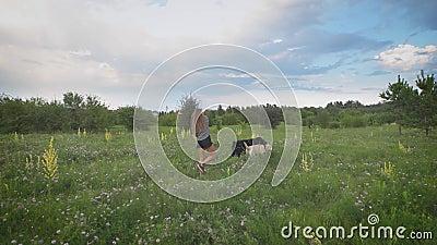 Den unga kvinnan går två hundkapplöpning i grönt blommande fält i sommarafton, hundkapplöpning spelar, härlig molnig himmel är in stock video