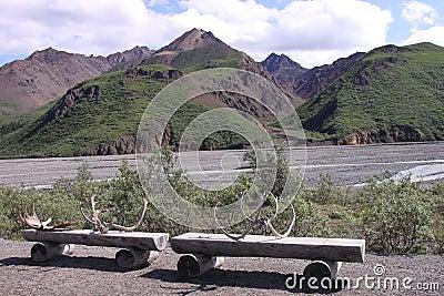 Denali benches