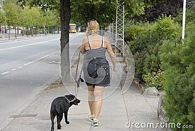DENMARK_FEMALE DOG WALKER Editorial Photography