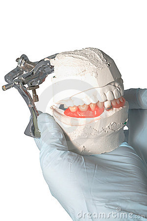 Dental Lab Articulator with dental prosthesis