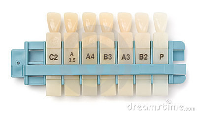 Dental teeth samples