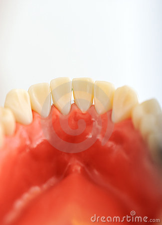 Dentists teeth checkup, series of related photos