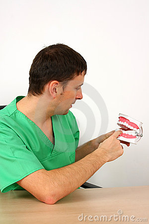 Dentist showing a big reproduction model of teeth