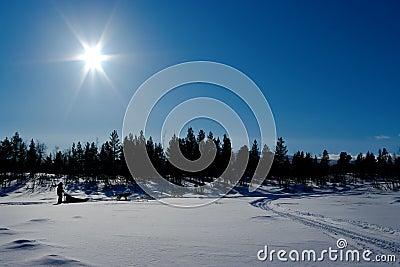 Deogsledding Tour in northern scandinavia