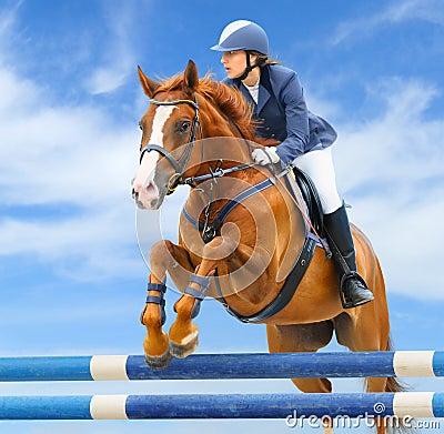 Deporte ecuestre: muestre el salto