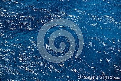 Depp blue sea