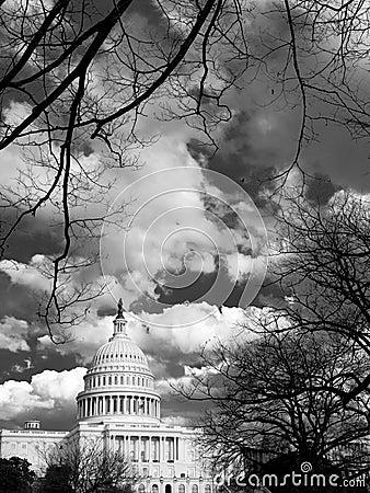 Der Capitol Hill hinter Bäumen