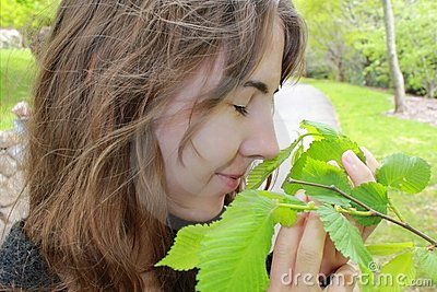 Der Geruch des Frühlinges