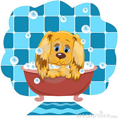 Der Hund badet.