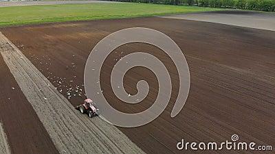 Der Traktor ist, mit zusätzlichen Rädern macht die Bearbeitung vom Boden der braunen Farbe auf dem Hintergrund von rot stock video