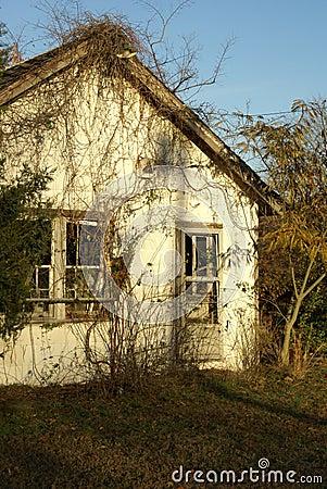 Derelict Cottage 2