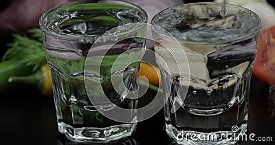 Derrame a vodca do ?lcool de uma garrafa em dois vidros disparados Fundo com vegetais video estoque