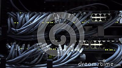 Des câbles d'UTP sont reliés à un commutateur de réseau Activité de réseau sur le commutateur Serveurs montés par armoire Plan ra banque de vidéos