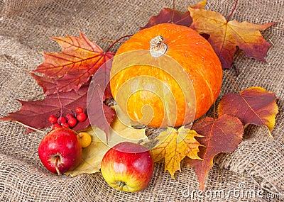 Des Herbstes Leben noch mit Kürbis