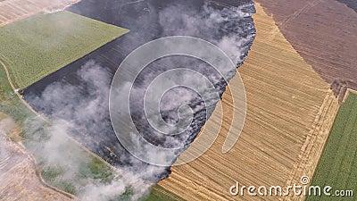 Desastre ecológico que causa incendios en campo rural almacen de metraje de vídeo