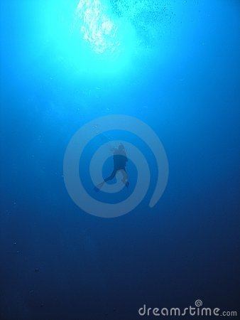 Descending diver into the blue