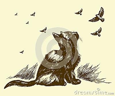 Desenhar do gato e dos pássaros