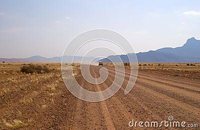 Desert 4