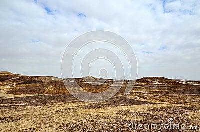 Arava central