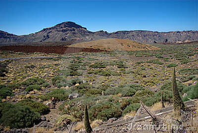 Desert area in Tenerife 2