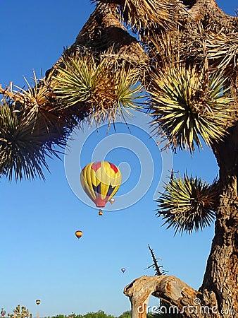 Desert Balloon Race
