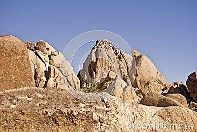 Desert Boulders