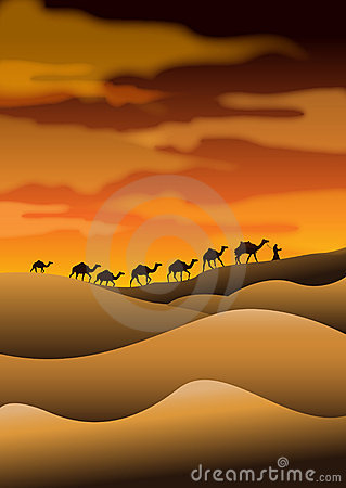 desert camel caravans stock photos image 13611343