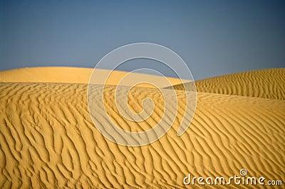 Desert Dune, Wahiba Sands, Oman