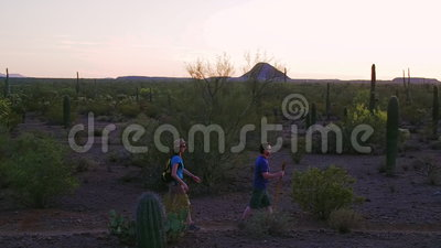 Desert Hikers at Sunset. Southwest Desert Hikers at Sunset stock video footage