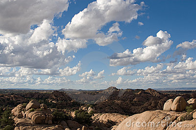 Desert landscape of Arizona