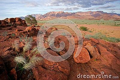 Desert landscape, Brandberg mountain, Namibia