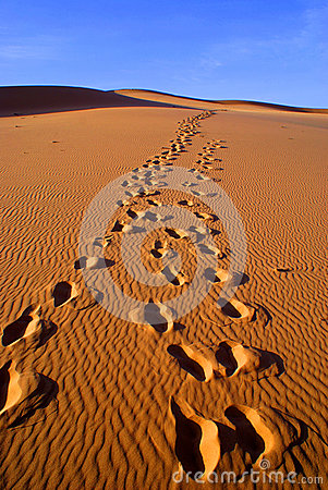 Free Desert Landscape Of Gobi Desert With Footprint In The Sand, Mongolia Royalty Free Stock Photos - 36789508