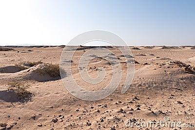 Desert landscape of Sahara