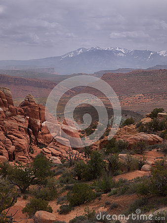 Desert landscape with snow capped mountains