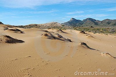 Desert like beach sand in spain