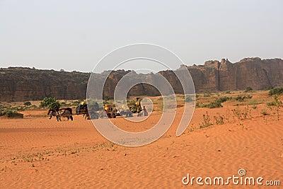 Desert in mali