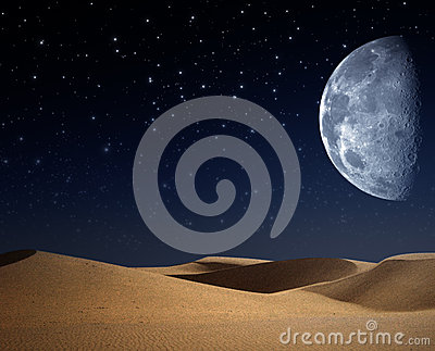 Desert on the night