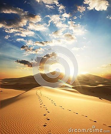 Free Desert On Sunset Stock Image - 6932871