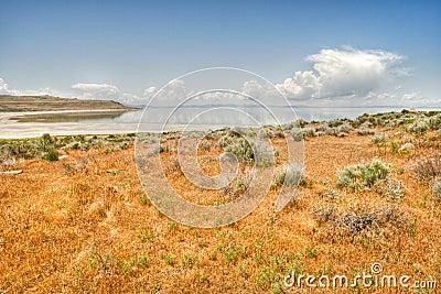 Desert prairie and lake