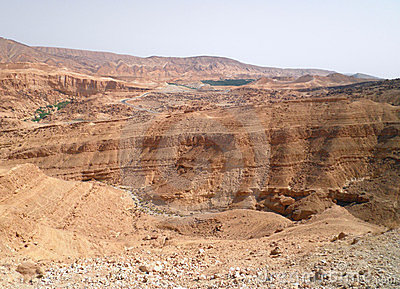 Desert Sahara - Tunisia