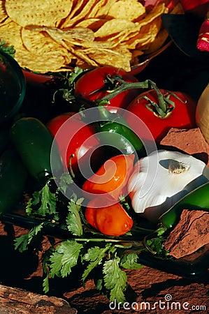 Free Desert Salsa & Chips Stock Images - 2241614